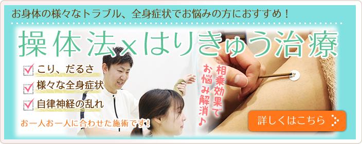 操体法、鍼灸治療。お身体の様々なトラブル、全身症状でお悩みの方におすすめ。